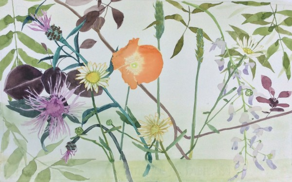 Suzy Fasht Garden Flowers with a Poppy watercolour on paper Frame: 43 x 53 cm