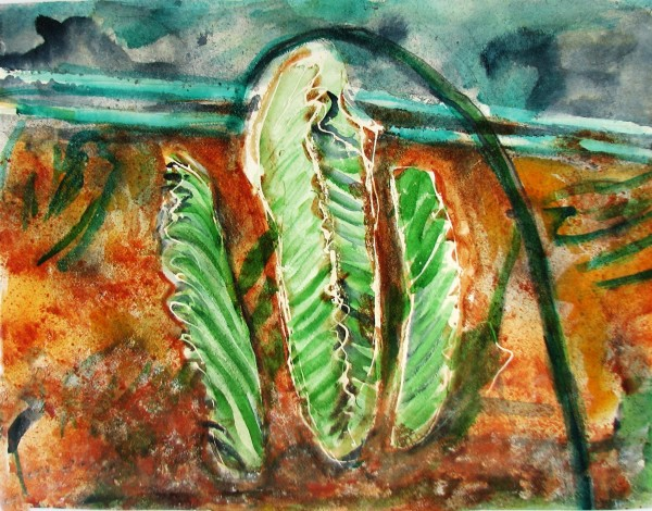Agathe Sorel Cactus and Hosepipe watercolour & collage 39x50cm