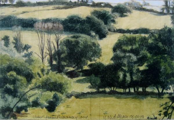 Mike Middleton, View from Runaway Lane