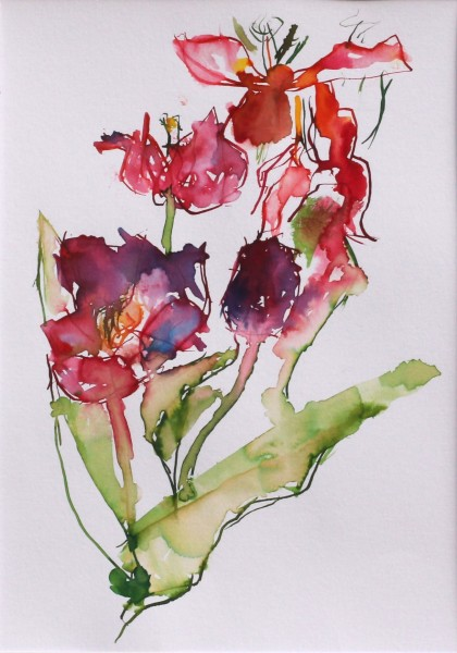 David Hamilton Spent Tulips watercolour Frame: 50 x 40 cm Artwork: 28 x 20 cm