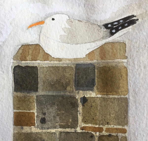 Jill Leman Seagull in St Ives watercolour