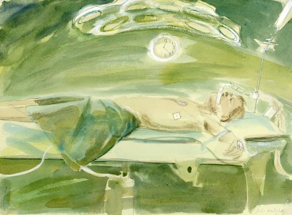 Julia Midgley, Operation Completed V.1