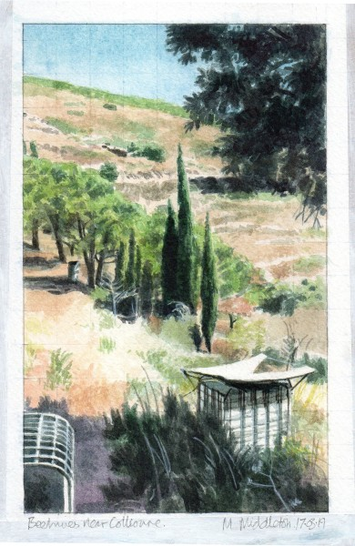 Mike Middleton, Beehives near Collioure