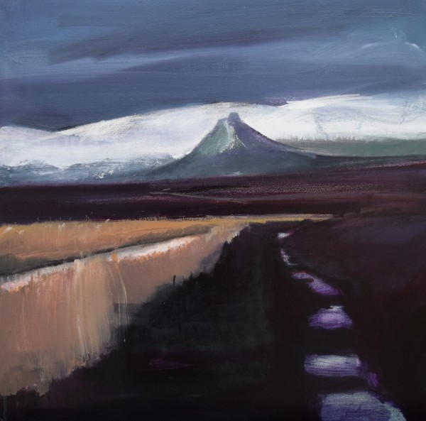 Fred Ingrams, Maiden Pap, Caithness, 2020