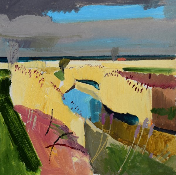 Fred Ingrams, Reeds on Methwold Severals Norfolk, 2016