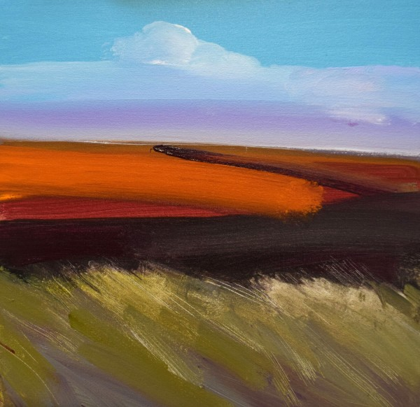 Fred Ingrams, Windy, Evening, Camster, Caithness, 2020