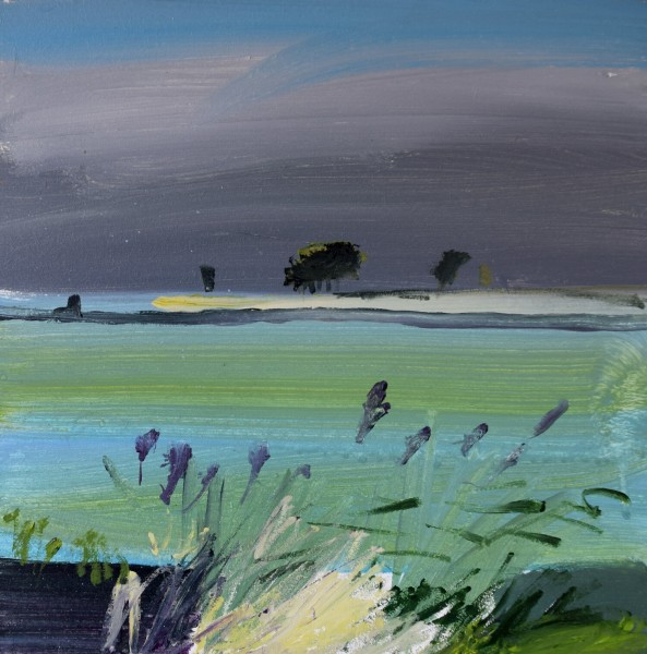 Fred Ingrams, Leeks, Bourne Farm 2019
