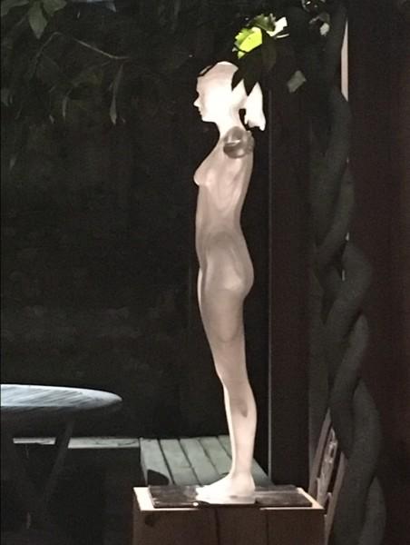 Vitruvian Woman, 2017