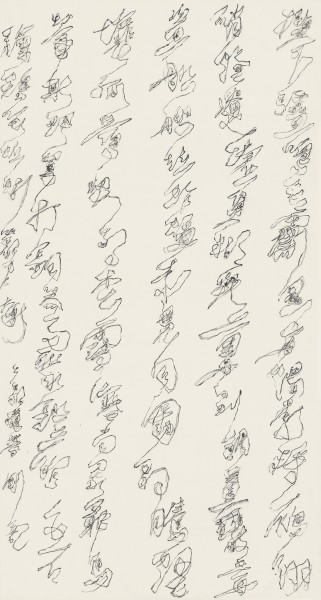Wei Ligang 魏立刚, Shadow Cursive 2 叠影草书(2), 2012