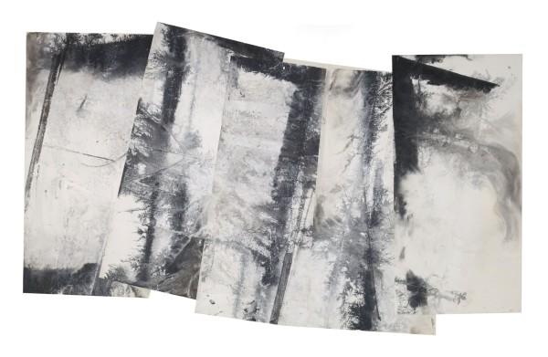 Zheng Chongbin 郑重宾, Unfolding Landscape 拓展地带, 2015