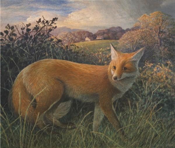 James Lynch, Reynard the Fox