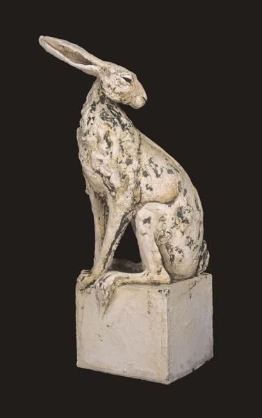 Tanya Brett, Large hare