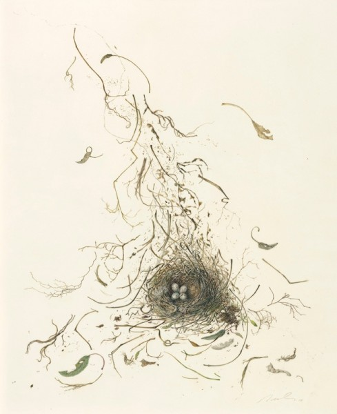 Kate Nessler, Nest With Sage