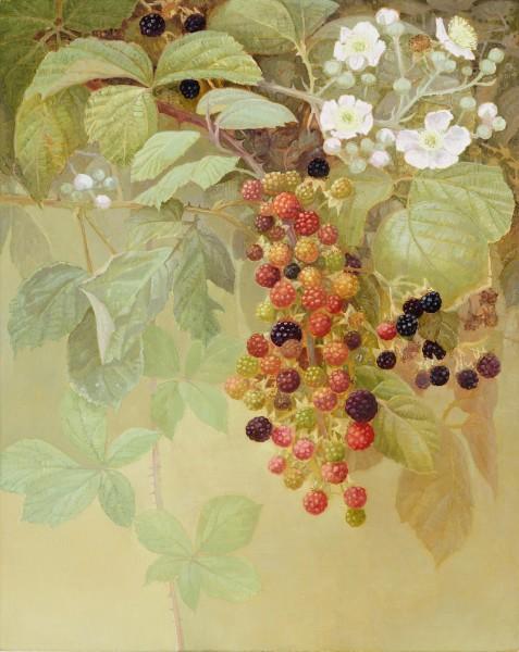 Jane Wormell, Autumn