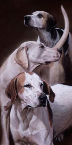 Gary Stinton, VWH Foxhounds