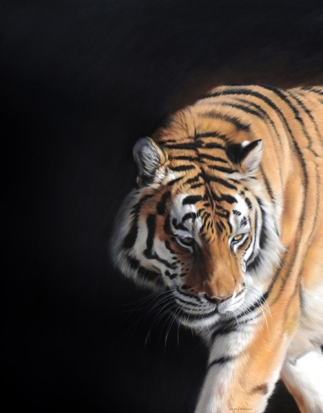 Gary Stinton, Close Encounter II Amur Tigress