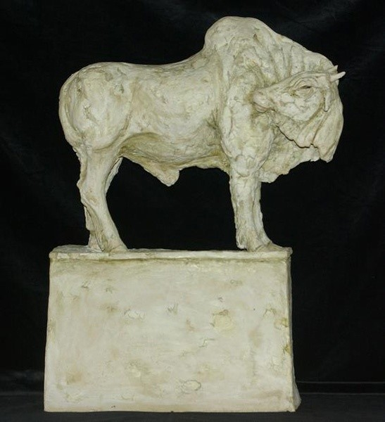 Tanya Brett, Indian Bull