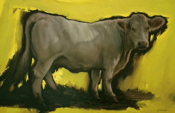 Michael J Austin, The Charolais Cow