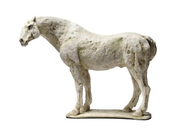 Tanya Brett, Horse