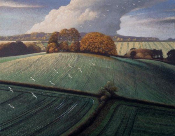 James Lynch, Seagulls, Brimble Lea Clump