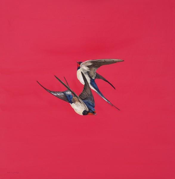 Tim Hayward, Swirl - Red