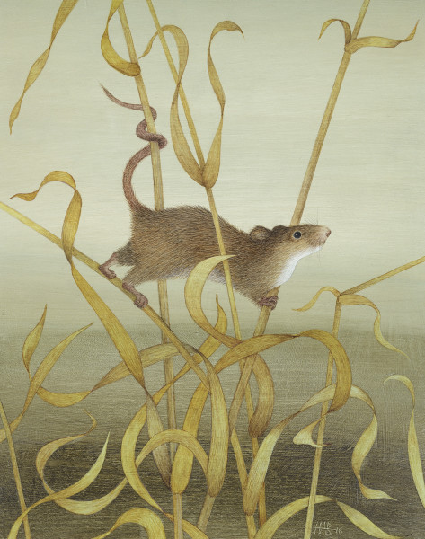 Harriet Bane, Harvest Mouse