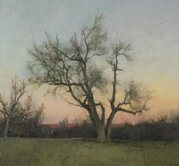 T. Allen Lawson, Evening