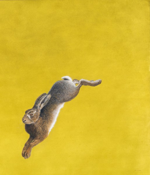 Tim Hayward, The Leap - Yellow
