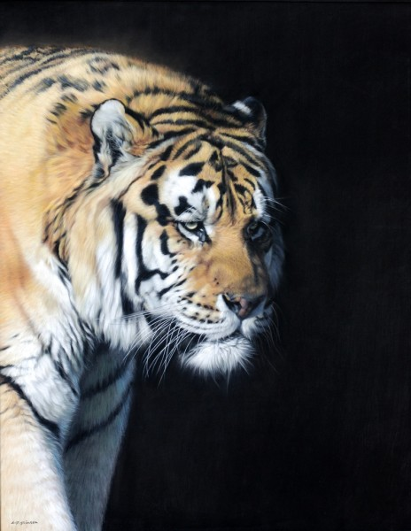 Gary Stinton, Close Encounter I Amur Tiger
