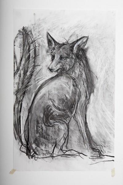 Tanya Brett, Arctic Fox