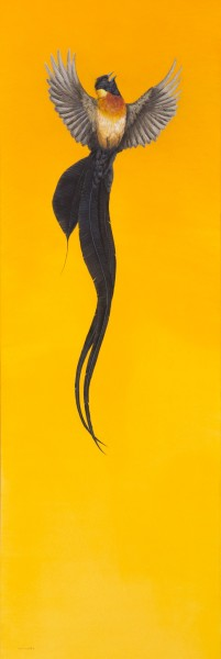 Tim Hayward, Soar – Yellow