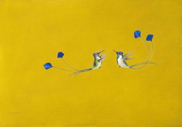 Tim Hayward, The Display - Yellow