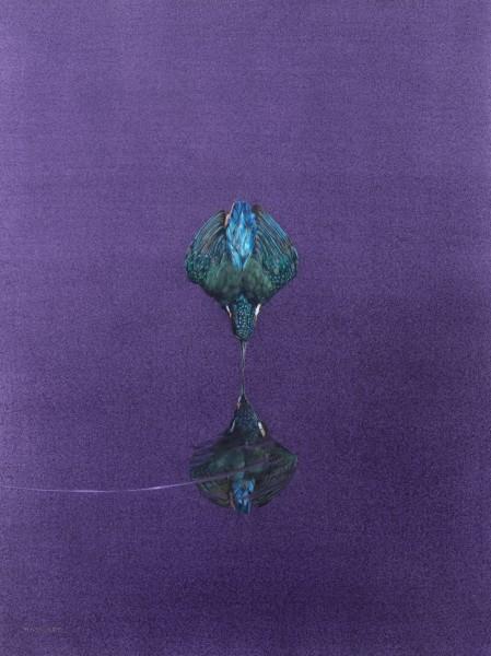 Tim Hayward, Reflection - Purple