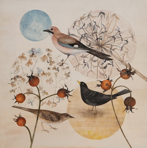 Harriet Bane, Garden Birds and Seed Heads