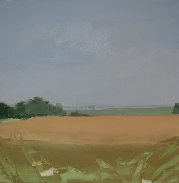 Sara MacCulloch, Fields and Basin, 2014