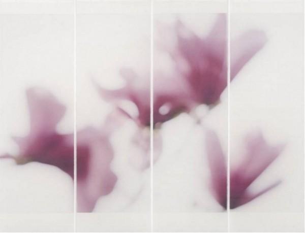 Jeri Eisenberg, Magnolia, No. 12, 2010