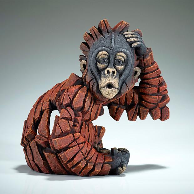 Matt Buckley - Baby OH Orangutan, 2019