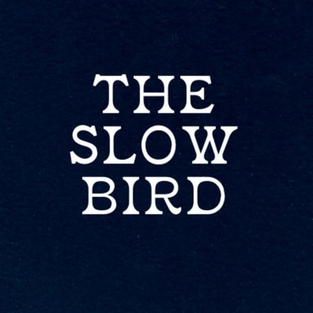 The Slow Bird