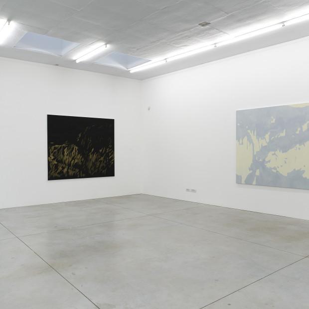 Evi Vingerling & Chaim van Luit