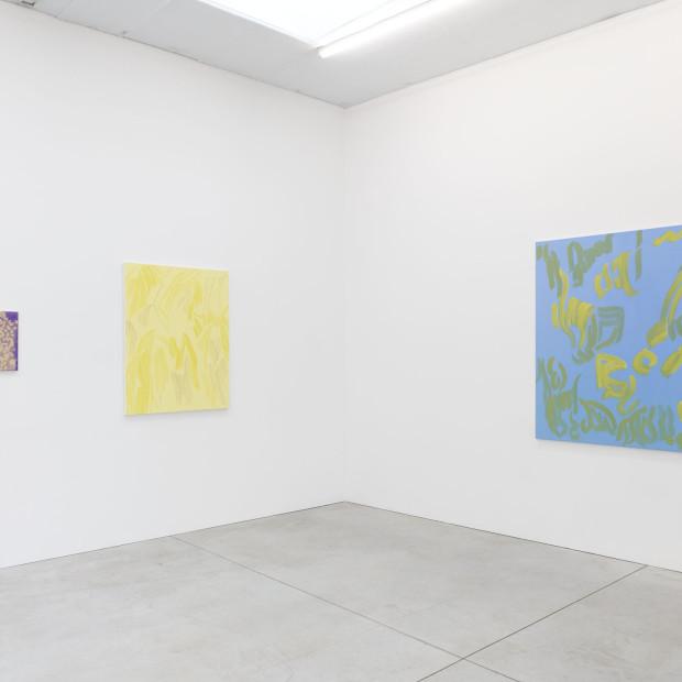 Evi Vingerling Upbringing 2019 Installation View 12 I Kristof De Clercq Gallery