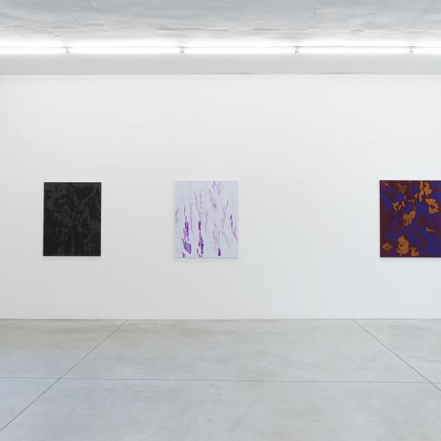 Evi Vingerling Upbringing 2019 Installation View 8 I Kristof De Clercq Gallery