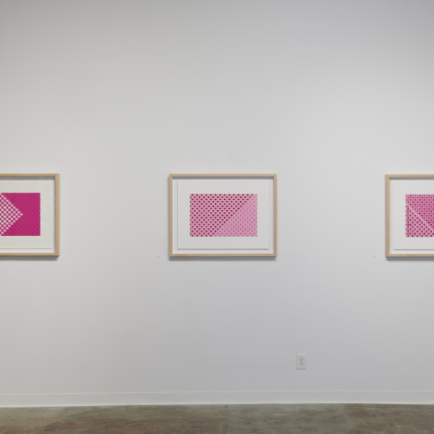 Looking at a Flower, Chapter 3 An Exhibition of New Work by Joseph Cohen