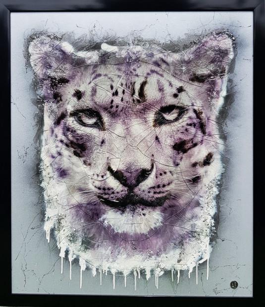 Dan Pearce, Endangered - Snow Leopard - Black Frame, 2019