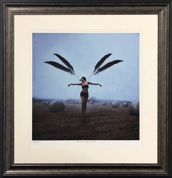 Michelle Mackie , With Brave Wings She Flies, 2019