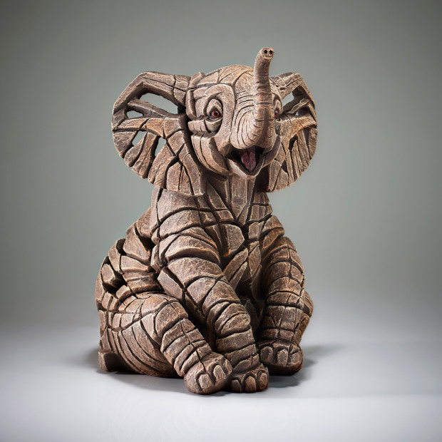Matt Buckley, Elephant Calf, 2019