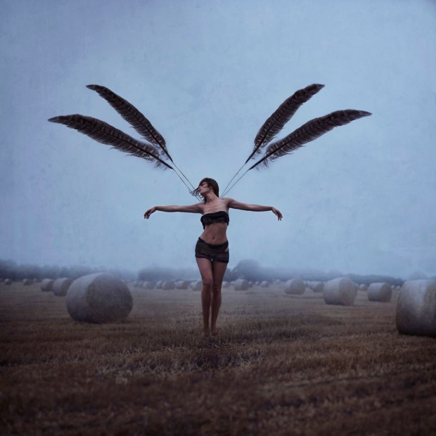 Michelle Mackie, With Brave Wings She Flies, 2019