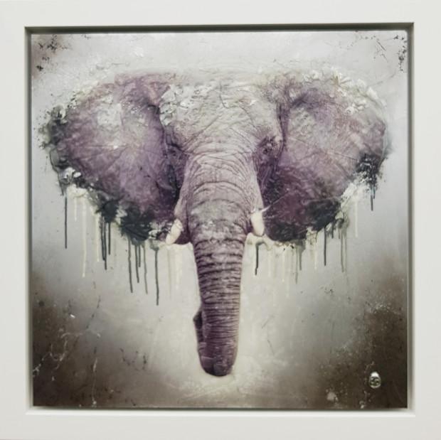 Dan Pearce, Endangered - Elephant, 2019