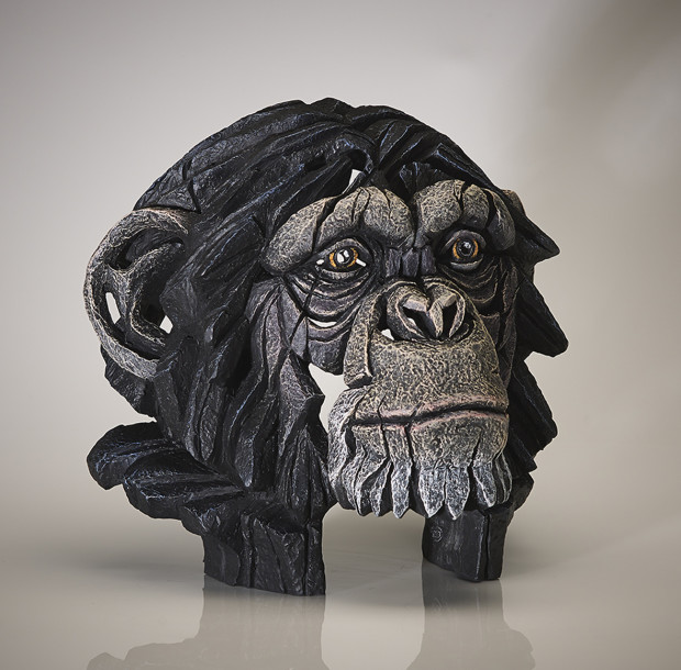 Matt Buckley, Chimpanzee Bust