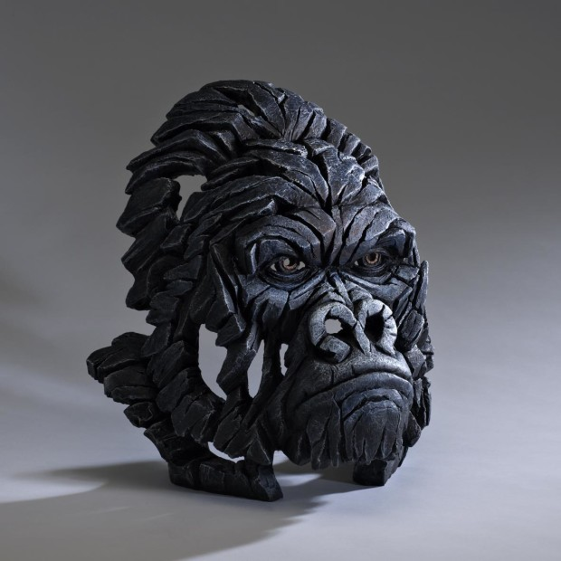 Matt Buckley, Gorilla Bust