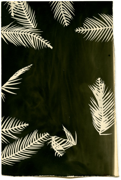 Bruno Roels Palmograph #3, 2019 Silver gelatin print Unique 40 x 30 cm 15 3/4 x 11 3/4 in